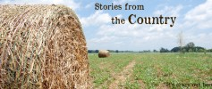 stories_country