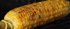 featured_grilled_corn