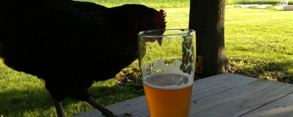 chicken_beer