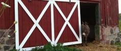 featured_new_barn_door