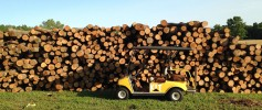 featured_wood_pile_large