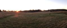 featured_mowed_field