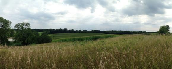 featured_farmland
