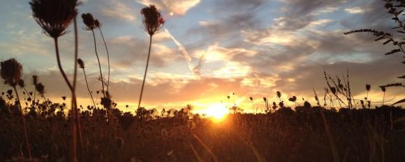 featured_last_summer_sunset